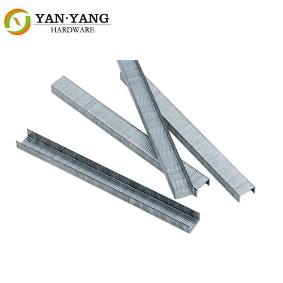 22 Ga Stainless Steel Staple Furniture Nail 1007f