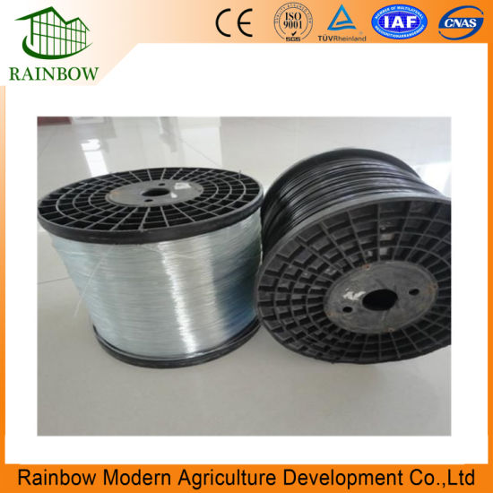 Smooth Surface Polyester Wire