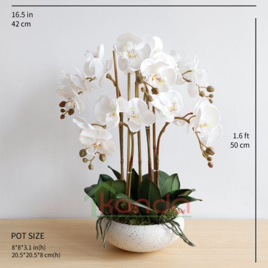 China Artificial Flowers Real Touch Artificial Flowers Decoration Artificial Butterfly Orchids Wholesale