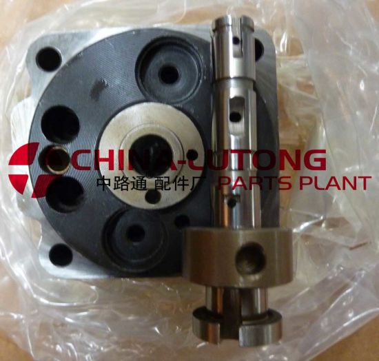 China Zexel Injection Pump Head Rotor 146403-6120 for Nissan - China