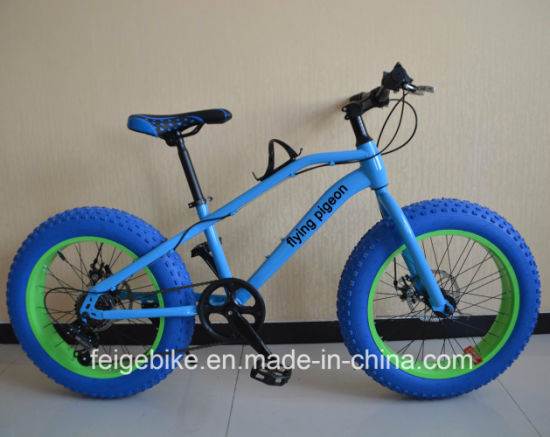 "20""*4.0 Fat Tire Rear 6 Speed MTB Teenager Mountain Bicycle (FP-KDB-17031) pictures & photos"