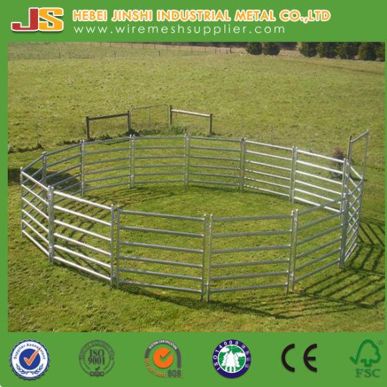 metal farm fence. Metal Farm Fence. Australia \\u0026 New Zealand Used Galvanized Pipe  Welded Cattle Fence