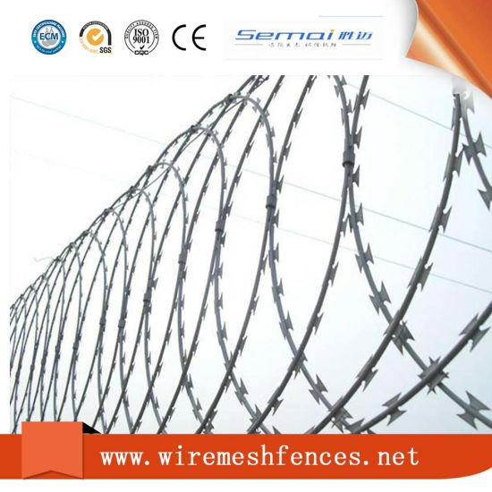 China Hot Dipped Galvanized Razor Barbed Wire with Factory Best ...