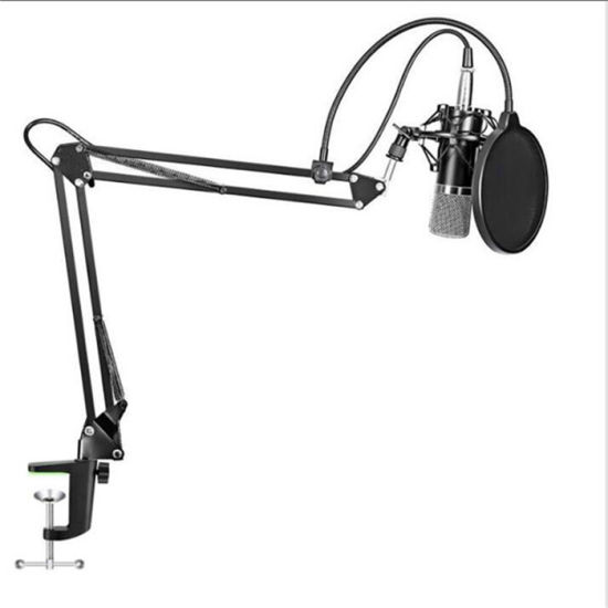 New Arrival Custom Design Recording Condenser Microphone pictures & photos