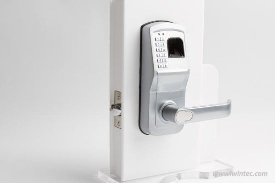 Hot Sales Fingerprint & Keypad Lock (V-FP6800-SS) pictures & photos