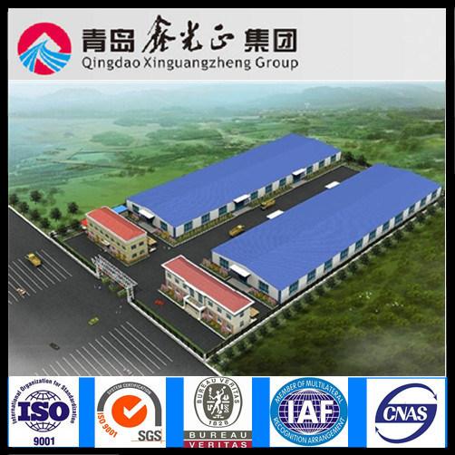 Customized Steel Structure Workshop (SSW-347)