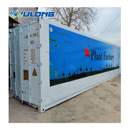 New Type Moveable 40 FT Container Plant Factory Greenhouse for Vertical Planting Lettuce Hydroponics System