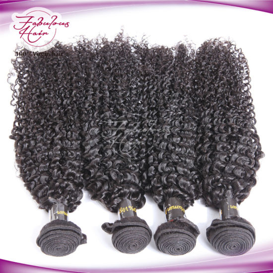 Wholesale Price Afro Kinky Curly Indian Human Hair pictures & photos