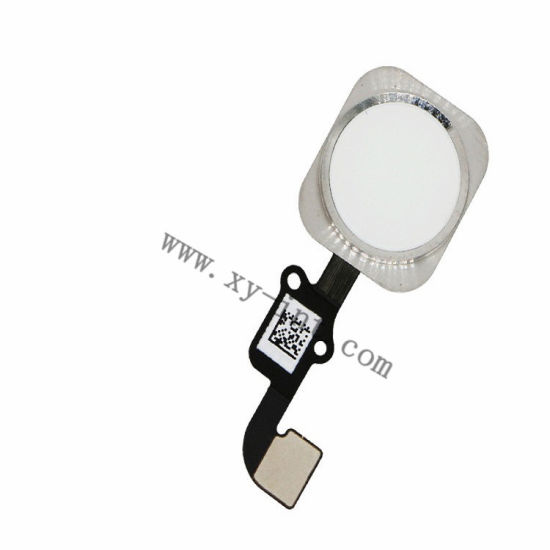 High Quality Home Button for iPhone 6s Home Key Flex Cable pictures & photos