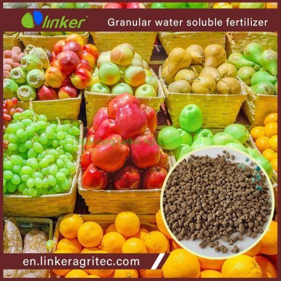 Rice Use Fulvic Acid NPK Fertilizer