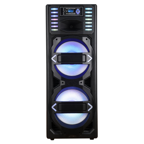 Dual 15inch Professional Karaoke Speaker with Bluetooth