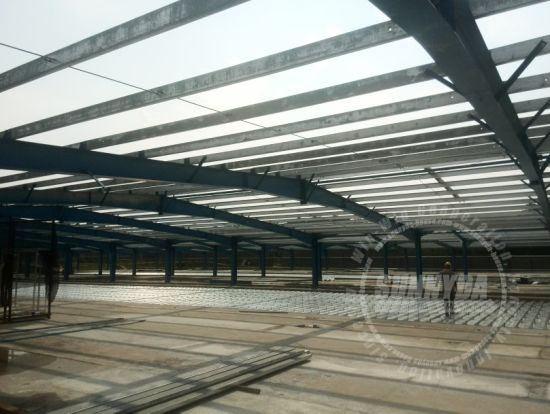 Lightweight Steel Structure Greenhouse for Sale (SD-877)