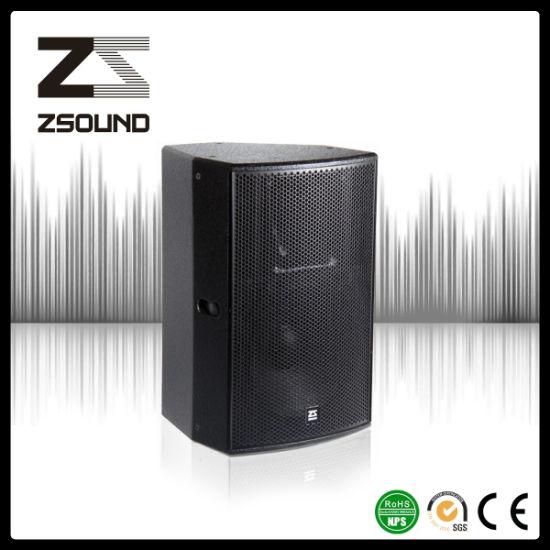 China Zsound P15 PRO DJ Acoustic Foh Audio Speaker - China Speaker