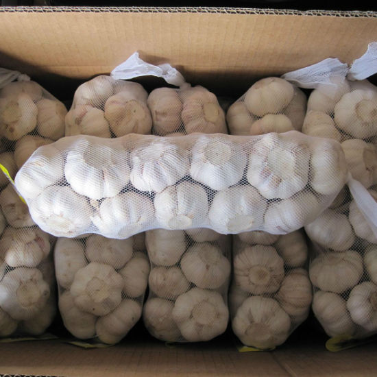 Chinese Normal White Garlic (4.5cm, 5.0cm, 5.5cm, 5.5cm, 6.0cm) pictures & photos