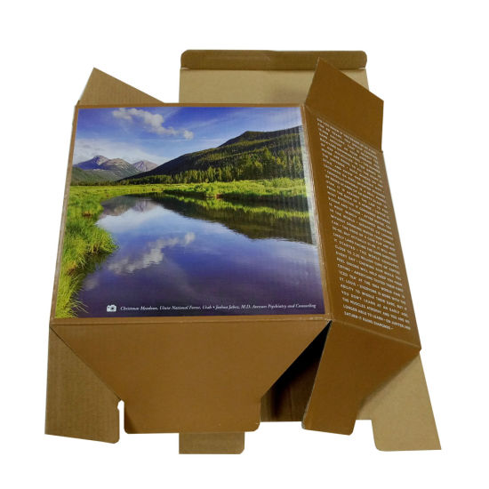 Custom Printing E Flute Packing Box pictures & photos