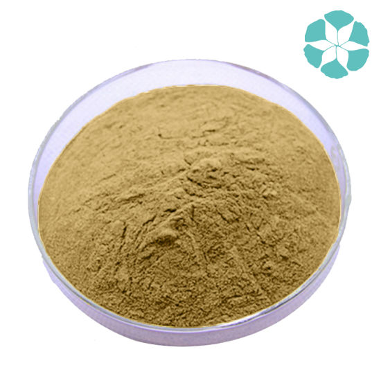 Mulberry Leaf Extract / Morus Alba Extract / Dnj pictures & photos