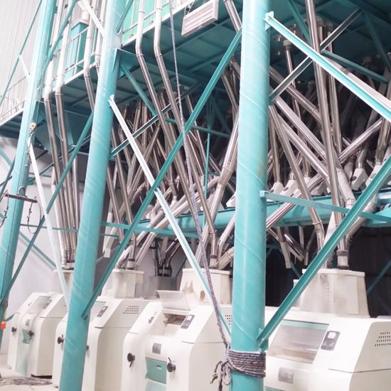 100t Wheat Flour Mill Machine Flour Mill Plant for Semolina Farina Maida pictures & photos