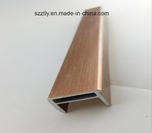 6063 Brushed Anodised Aluminium/Aluminum Extruded Profile pictures & photos