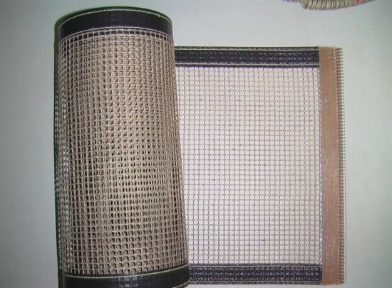PTFE Open Mesh Conveyor Belt for Fabric Dryer pictures & photos