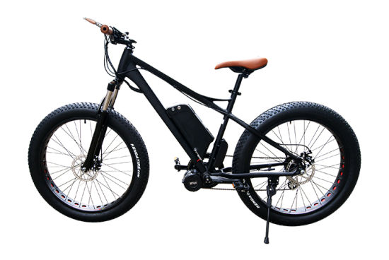 48V 750W E Bicycle MID Motor pictures & photos