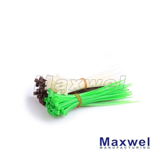 China Free Sample 4′′ 6′′ 8′′ 10′′ Length Zip Tie Nylon66 Plastic ...