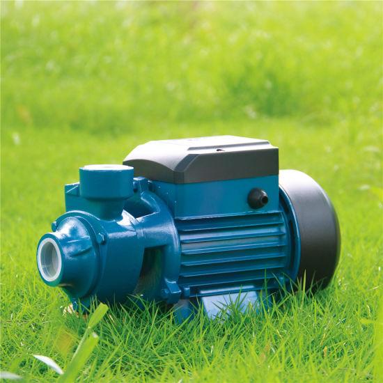 Iron Cast Brass Impeller Electric Peripheral Pump Vortex Pump Micro Water Pump Auto Pump Surface Pump Graden Pump for Agriculture Irrigation (QB60)