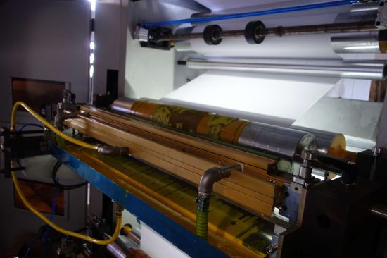 High Speed 8 Colors Plastic Film Flexographic Printing Machine (NX-B8800) pictures & photos