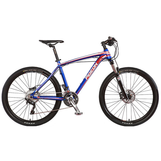 High Grade Cameron Style MTB / 30 Speed Mountain Bike (FP-MTB-A03) pictures & photos