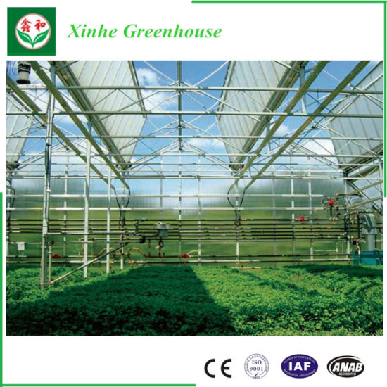 China Turn Key Greenhouse