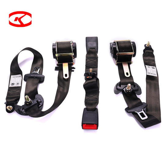 Custom Polyester Webbing Material Ar4m Type Retractable Safety Auto Vehicle Car Wholesale Seat Belt with Buckle