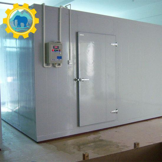 Restaurant Food Storage Deep Freezer Cold Room/Commercial Walk in Freezer/Compressor Freezer Room