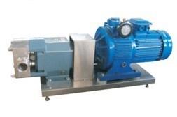 Sanitary Infinitely Variable Speed Rotary Lobe Pump