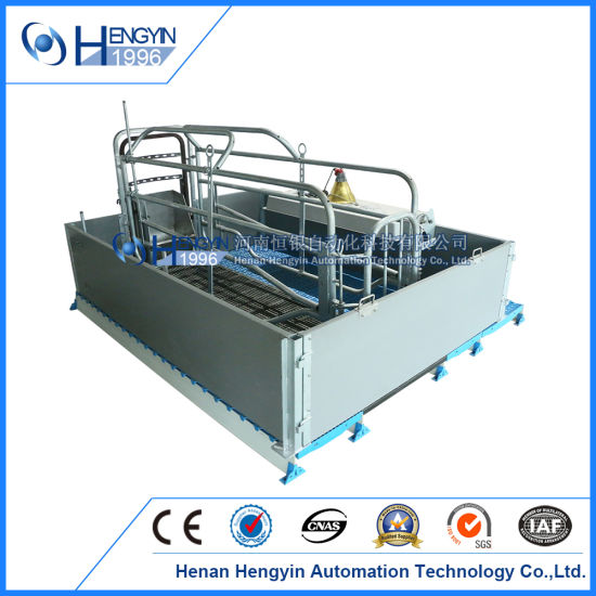 Customized Pig Farm Equipment New Style Design Comfortable Farrowing Crate