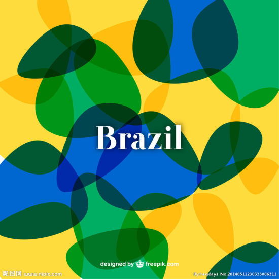 Efficient and Professional Shipping Service to Paranagua, Brazil