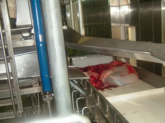 Slaughterhouse Meat Processing Machine Cattle Tripe Cleaning Machine for Slaughtering Machine