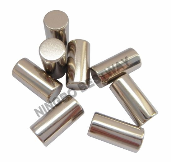 NdFeB Cylinder Disc Dia10mm Sintered NdFeB Magnet Hot Sale Products