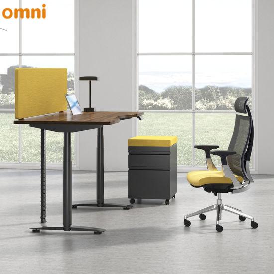 China Single Motor Height Adjustable Simple Office Desk Modern