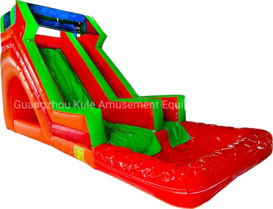 Coustomize Red Green Inflatable Water Slide and Pool for Sale pictures & photos