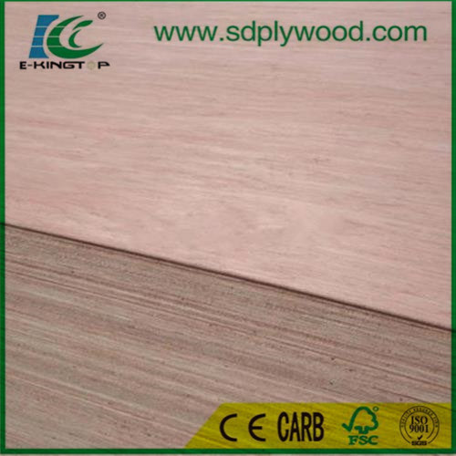Door Size Plywood/Door Skin Plywood Used in Door pictures & photos
