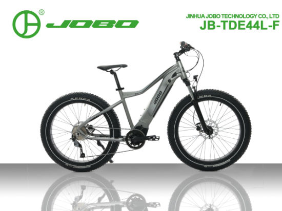 Snow and Rock Electric Bikes pictures & photos