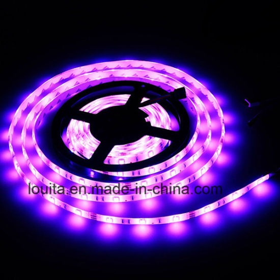 IP65 60LEDs 12V 5050 RGB LED Strip pictures & photos