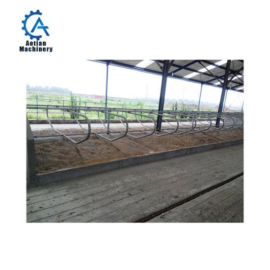 Farm Livestock Equipment Dairy Farm Cow Comfortable Rest Bed