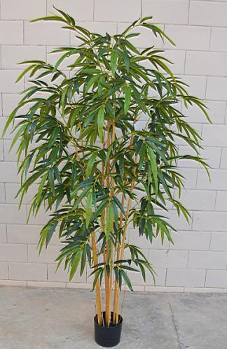 High Artificial Plants of Bamboo QS-A017s5-912 pictures & photos
