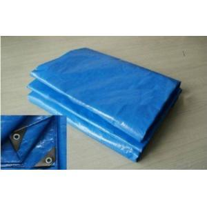 Double Blue PE Tarpaulin/PE Tarps/Poly Tarps pictures & photos