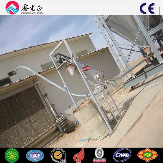 Steel Structure and Sandwich Panel Poultry House Shed
