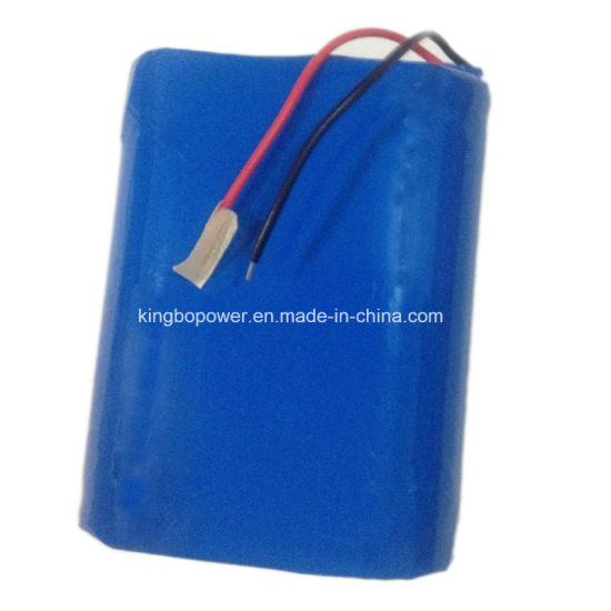 11.1V Rechargeable Lithium Ion Battery/Lithium Battery Charger (2800mAh)