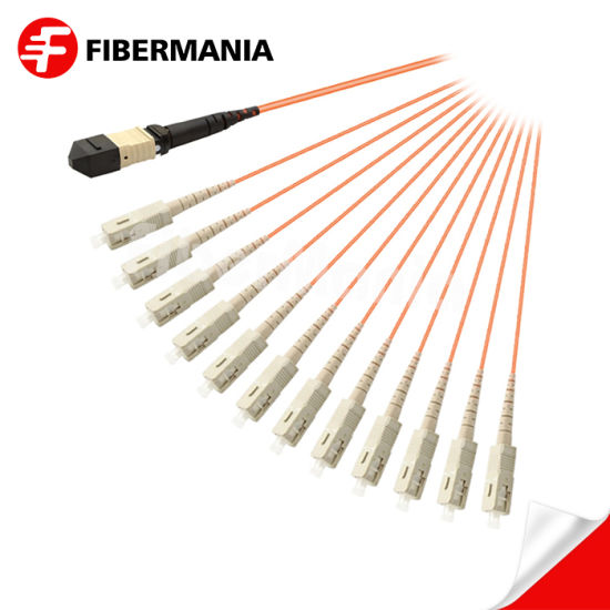 Fully Stocked MTP to Sc Fiber Optical Fanout Cable 12 Fibers for Data Center Fiber Optic Cable