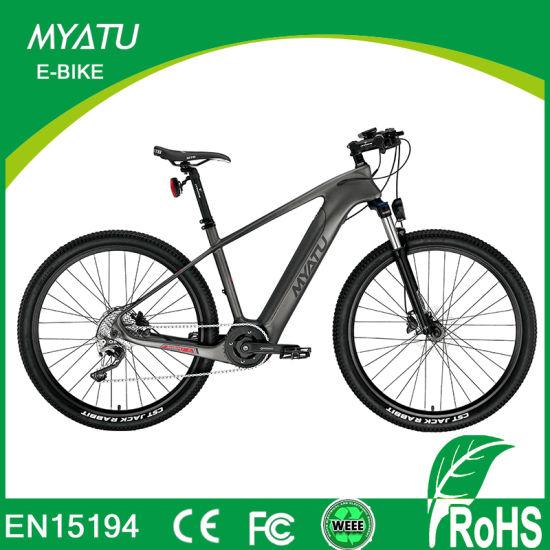 Middle Drive Motor Carbon Fiber E Bike