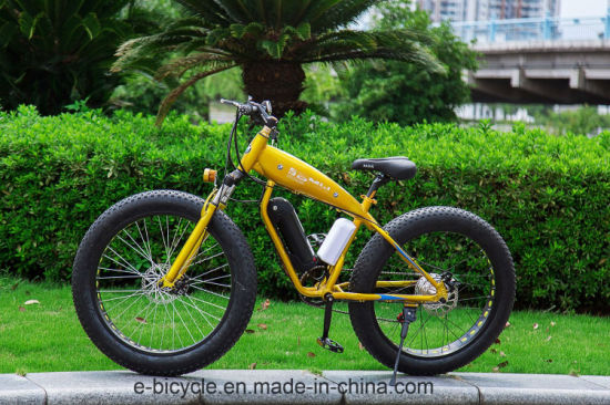 Aluminium Fat Tire Unfoldable Snow Electric Bicycle with Ce Certificate