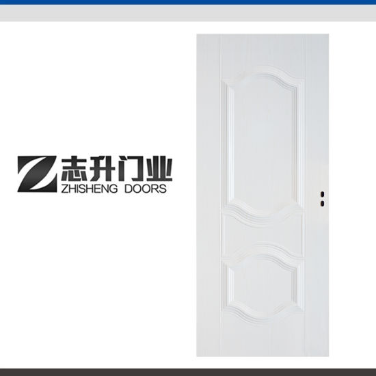 Chinese Factory Direct Front Design Interior Steel Door China